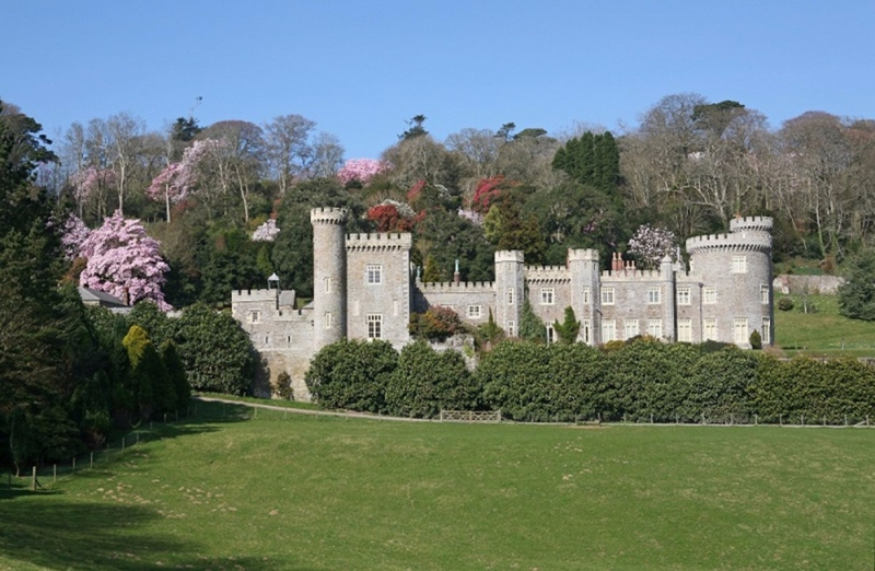 Caerhays Estate - The Castle Field